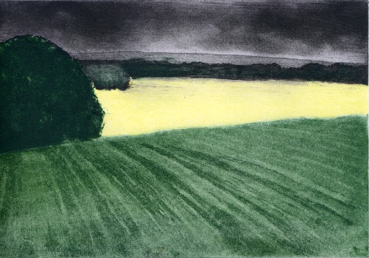 3.SocAA 11 2017 yellow field l colour etchingBLOG